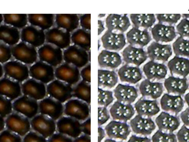 anilox roll cells before and after Evolution Bioclean cleaning